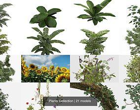 3D Plants Collection