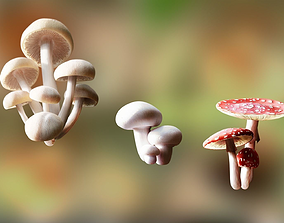 low-poly Game ready PBR Mushrooms 3D model SET 3