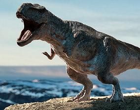 3D asset Tyrannosaurus Rex Rigged Animation
