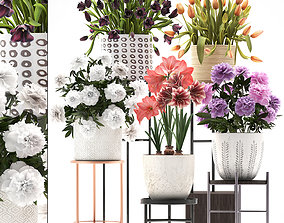 collection of flowers in pots for the interior 3D