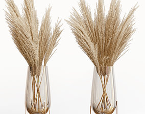 Big dried flower pampas grass in glass vase 5 3D model