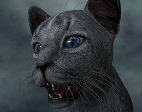 3D model CATS-002 Rigged Cat