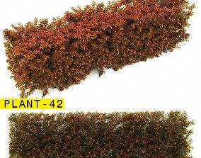 plant 42 3D model