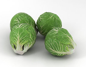 Brussels Sprout 3D