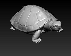 amazon turtle 3D print model
