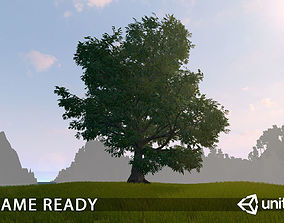 Old Oak for unity 3D asset