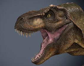 3D model Tyrannosaurus Rex-Animations