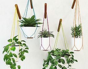 Pot planttt 3D model
