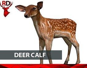 Deer Calf 3D model