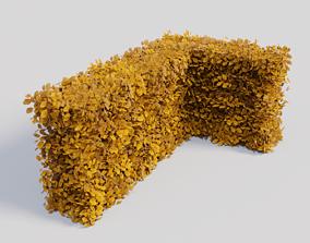 3D model Fagus sylvatica fall