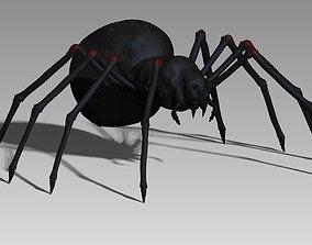 Black spider 3D asset