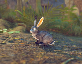 3D model Realistic Rabbit