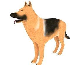 3D asset Dog German Shepherd