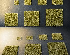 3D asset Moss Square
