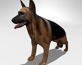 German shepherd animals 3D model