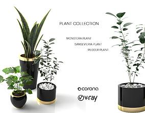 3D plant collection set 01