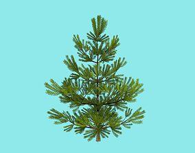 3D asset VR / AR ready Pine-tree