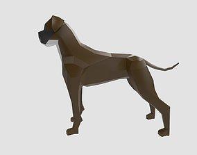 3D asset Dog Boxer