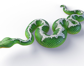 3D model low-poly Rigged Emerald Tree Boa