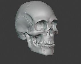 3D printable model body Skull