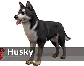 Dog - Husky 3D model