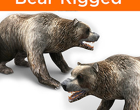 rigged Bear Rigged 3D Models game ready