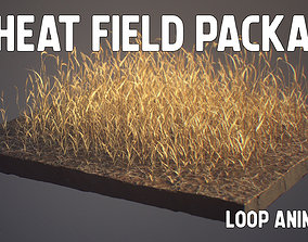 Wheat Field Package Loop Animated 3D