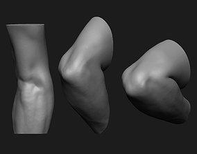 3D print model Elbow Set Anatomy Reference