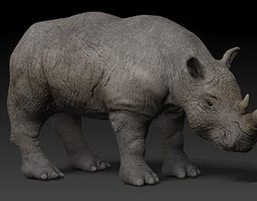 Rigged Rhino 3D asset