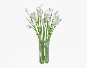 3D Callas flowers 04