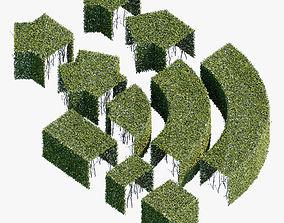 3D model topiary Hedge 600x600