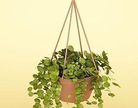 3D model Plant 34