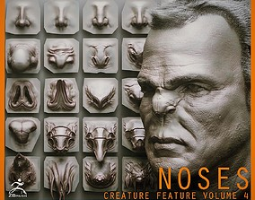 vdm NOSES - 40 ZBrush VDM Nasal Areas 3D model