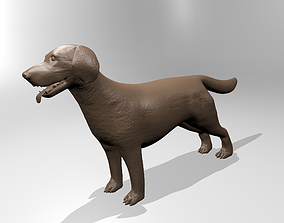 labrador 3D print model Labrador
