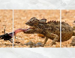 Triptych Wall Art Chameleon 3D model