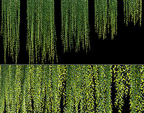 3D model Vernonia Elliptica - Curtain creeper