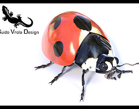 Accurate ladybug 3D