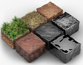 Coal life cycle - vegetation - peat - various 3D model