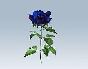 Rose blue 3D model