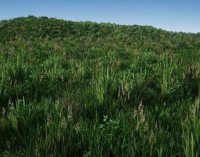 Realistic Grass Pack 01 3D asset