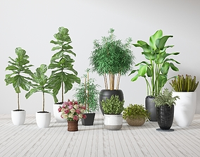 3D Pot Plants interior-design