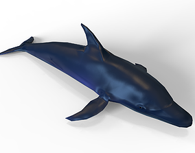 3D low poly Dolphin animated