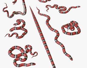 Scarlet Kingsnake - 3D Mesh realtime