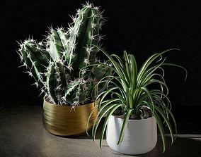 Set of plants 02 3D nature