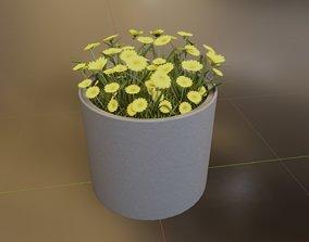 3D model Concrete Pot 800mm with Yellow Flowers Version 2