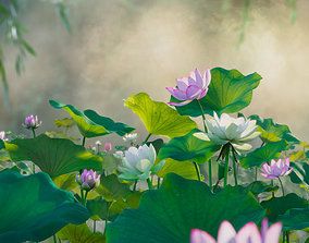 3D flower collection vol07 Lotus VR / AR ready PBR