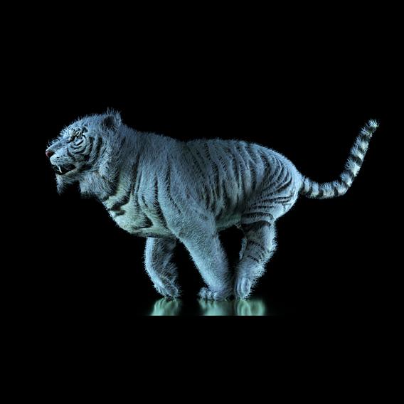 Raja, The White Bengal Tiger