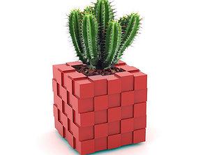 New Pot 3D model cactus
