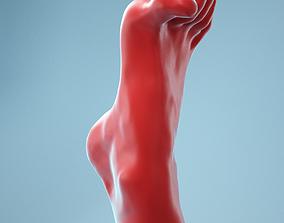 Open Toes Realistic Foot Model 05