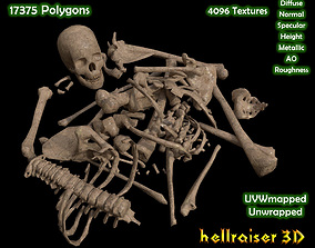 Dead Skeleton - 2 - PBR - Textured 3D model
